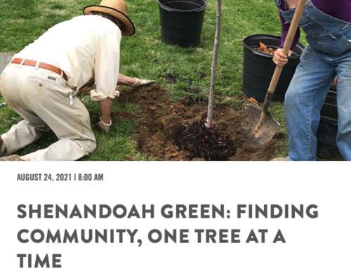 Shenandoah Green Awarded Prestigious Grant —  Allen Chapel Receives New Tree Plantings